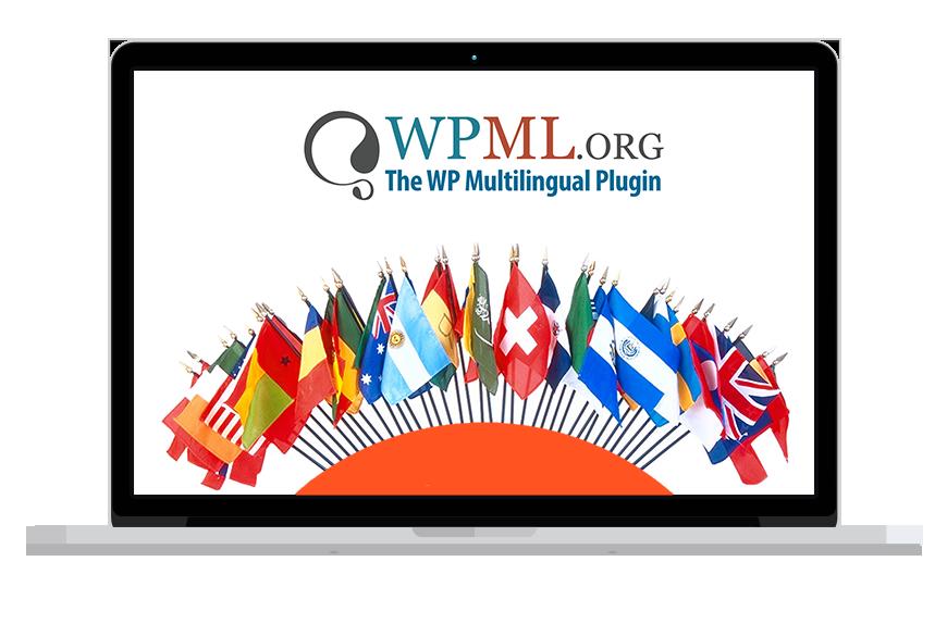 افزونه WPML - تصویر 1
