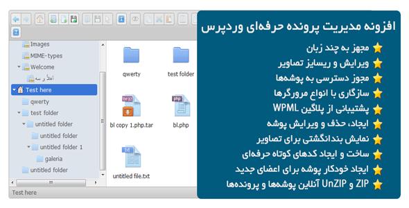 افزونه مدیریت پرونده حرفهای وردپرس Advanced File Manager